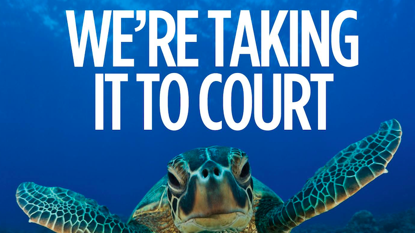 Join the Reef legal fight
